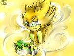 Supersonic: happy 24th sonic ! by shadowninja3