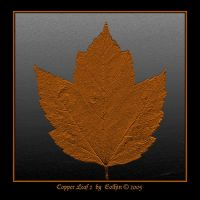 Copper Leaf 2 by Eolhin