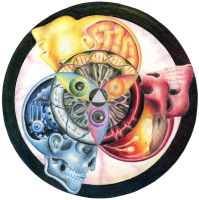 Color Wheel of Life by vicktour