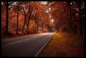 Through the deepest autumn by malte06