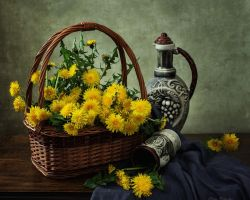 From the series Dandelion Wine by Daykiney