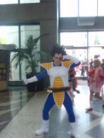 Vegeta by DreamsWithinMe