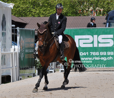 Show Jumping Stock 031 by Champi-Stock