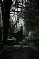 Highgate Cemetery by Arctictouch