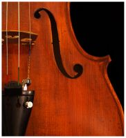 Rudoulf Doetsch Viola, c. 1998 by Yohannis