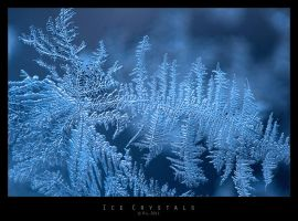 Ice Crystals by Mr808