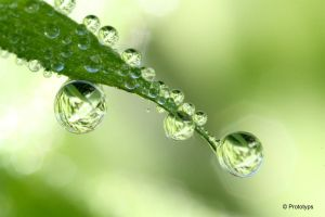 Waterdrop 3 by Prototyps
