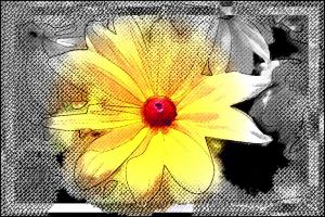 Bright Flower by BL8antBand