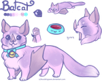 Batcat - ADOPTABLE AUCTION by FourDirtyPaws