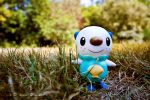 A Wild Oshawott Has Appeared by Dark-Slytherin