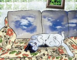 Diemos in the Sky with Catnip by troque