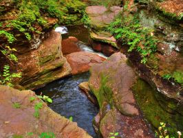 Ricketts Glen State Park 110 by Dracoart-Stock