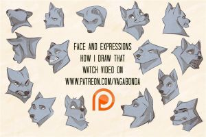 Patreon today video how i draw that faces by vagab0nda