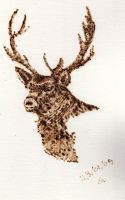 Pyrography on card - stag head by Everild-Wolfden
