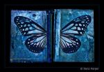 butterfly diaries - blue by chaoticparadox