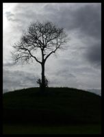 one tree hill by f3l1s14