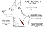 Post Round 1 Injuries: Tully by Alcalius