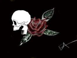 Skull and Rose by eddieblz