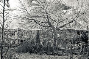 Dead place 2 - BW by Egg-Salad
