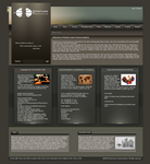 Web Design -Richard Lewis Com. by bob1305