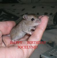 Happy birthday Jocelyne by Hevonie