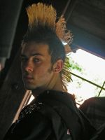 Mohawk 2 by emotional-asylum-stk