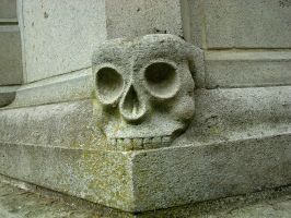 Skull by Risen-From-The-Ruins