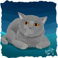 .:Lu:. British Blue Cat by Magic-Ray