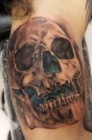 first skull of 2013 by bhbettie