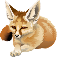 Fennec Fox by silvercrossfox