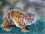 Crouching Bengal Tiger by jebbeansrgood