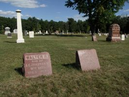 The Grave of Walt Wilmot by LostEnGraving