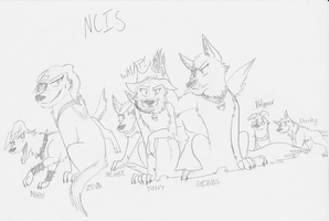 NCIS Dogs by WolfAsh