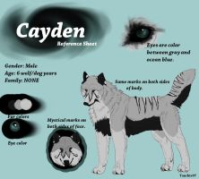 Cayden.:REFERENCE SHEET:. by Tanchie97