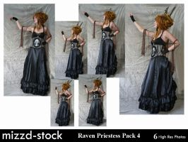 Raven Priestess Pack 4 by mizzd-stock