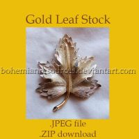 Gold Leaf Stock by BohemianResources
