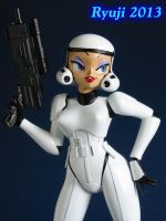 Helloo stormtrooper 09 by celsoryuji