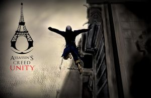 Assassin's Creed Unity: A Controlled Descent by Souls1122