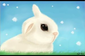 Bunny ,, Bunny by OsmallPrincessO