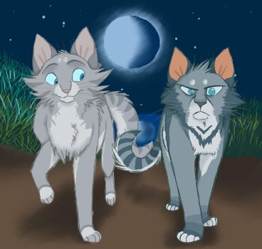 Willow X Jay by Graystripe64