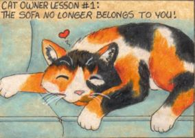 Cat Owner Lesson 1 - Art Card by stephanielynn