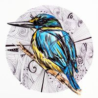 Kingfisher Design by fiona-clarkeART