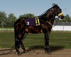 Harness Racer by AnimalArtKingdom