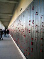 Australian War Memorial by starfishenterprise
