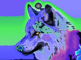 messed up efit of a wolf by Kittenlovesyaoi