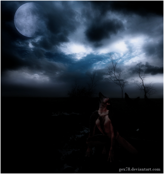 fullmoon by Gex78