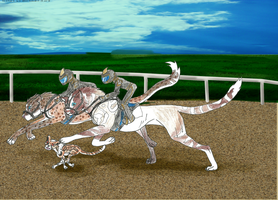 Racing Training by Forget-Me-Not-Fields