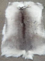 Caribou Backskin Blanket - SOLD by TabbyFoxTaxidermy