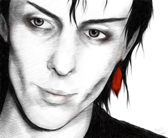 Peter Murphy by the801