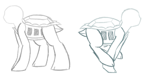 Turtle Sketch by starrynight32